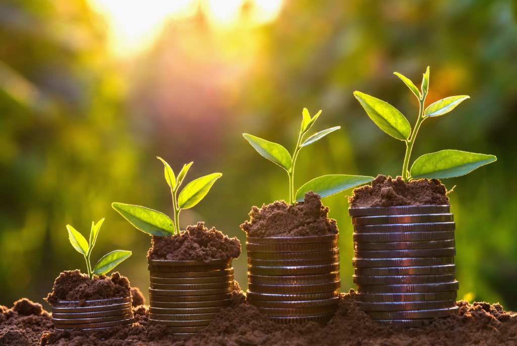 MEOM-für-Investoren